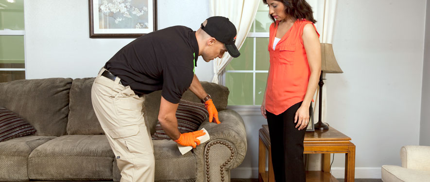 Montclair, NJ carpet upholstery cleaning